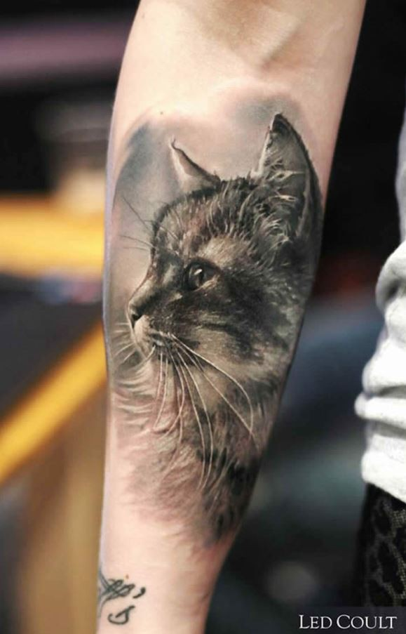 Breathtaking very detailed black and white forearm tattoo of cat portrait