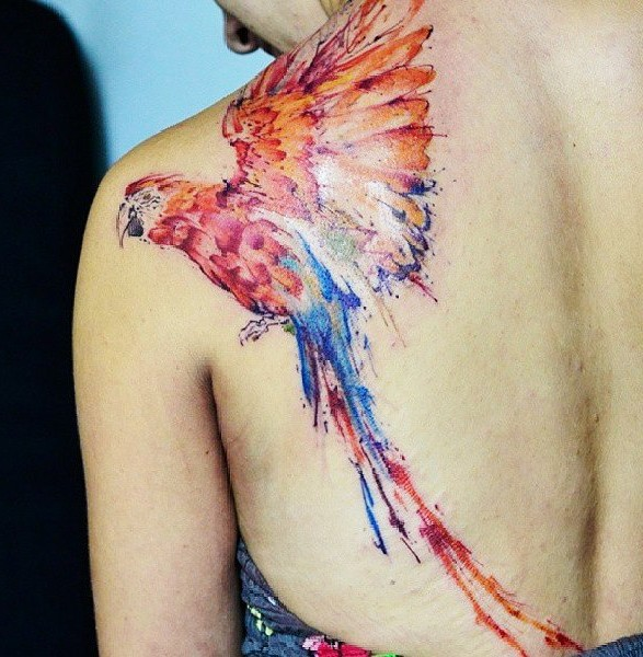 Bright colored macaw parrot detailed tattoo on shoulder blade in watercolor style