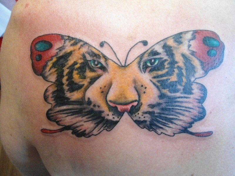 Butterfly tattoo with tiger face