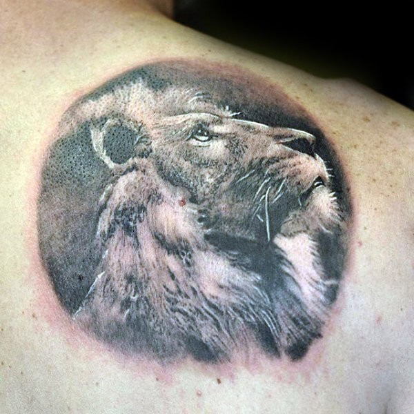 Circle shaped detailed back tattoo of lion portrait