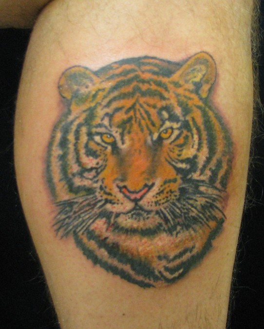 Beautiful Tiger Tattoo Design On Thigh: Color Ink Tiger Face Tattoo On Leg