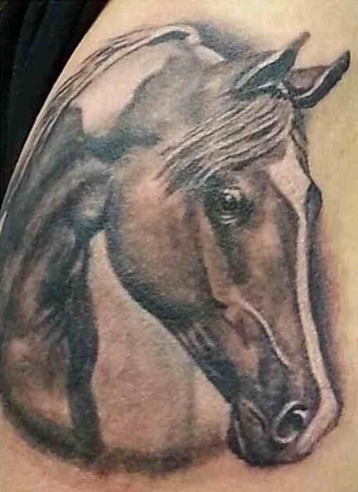 Colored horse head tattoo