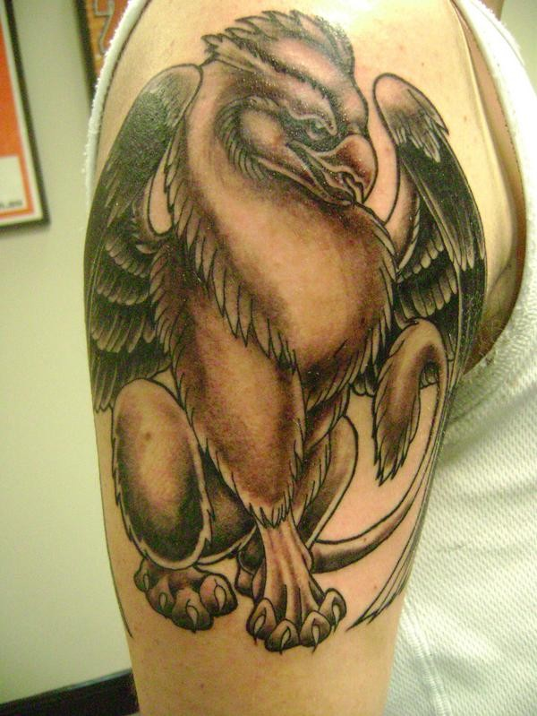 Colored ink griffin tattoo on shoulder for male