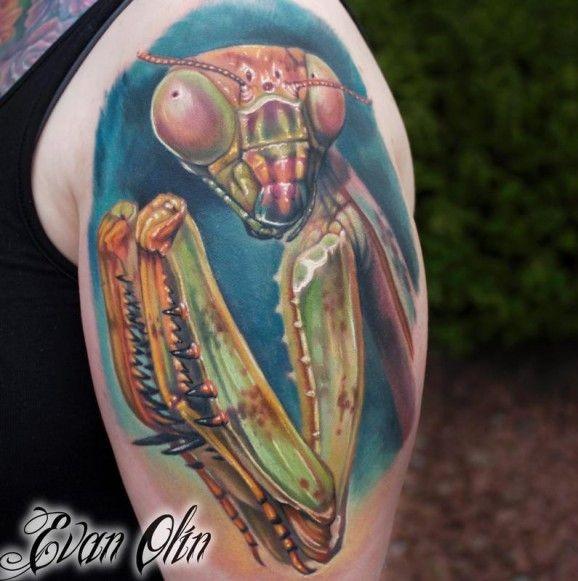 Colored mantis tattoo on half sleeve by Evan Olin