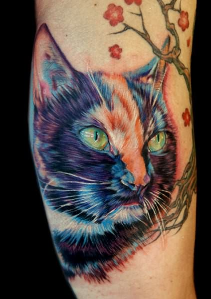 Realistic domestic cat tattoo in colour