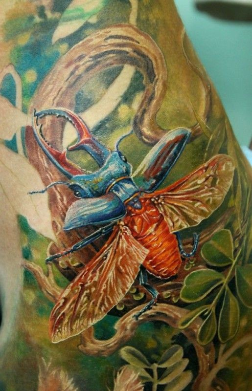 Colorful great bug tattoo on shoulder by Alexander Pashkov