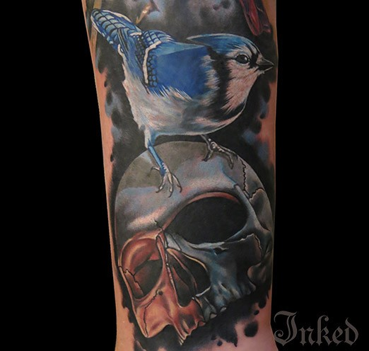 Colorful skull with blue bird tattoo