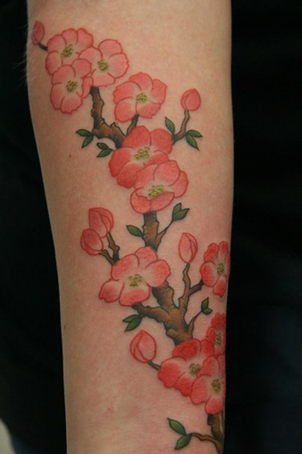 Coloured сherry blossom forearm tattoo