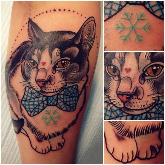 Coloured cat tattoo by Katie Shocrylas
