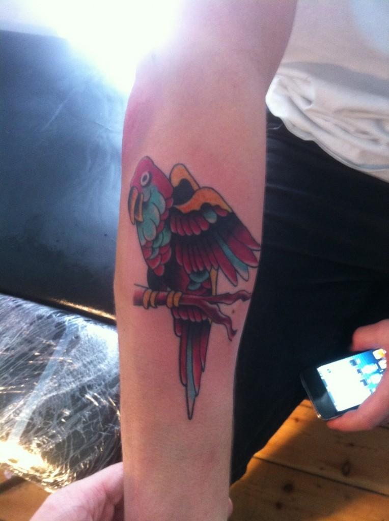 Coloured parrot forearm tattoo