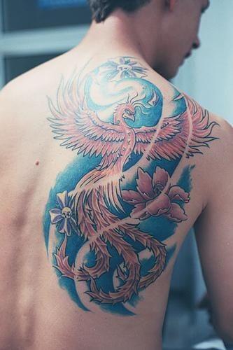 Tatuaggio colorato sulla spalla la fenice sul fondo azzurro