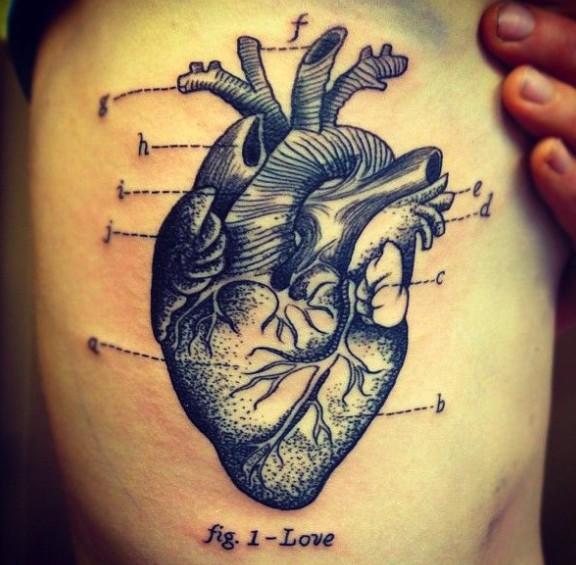 Tatuaggio carino il cuore umano in forma anatomica