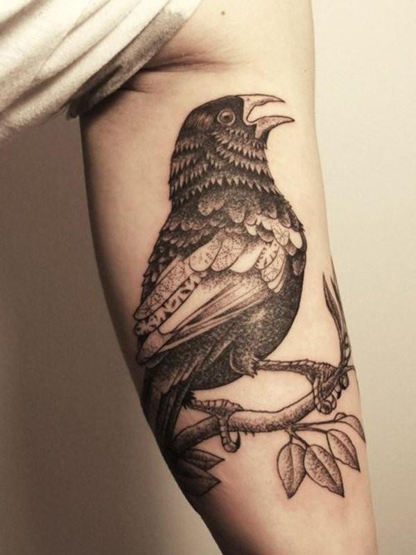 Crow bird tattoo for guys on arm