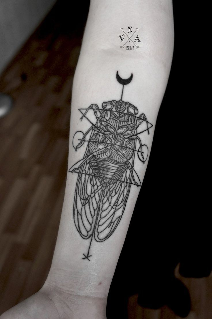 Cult style big black and white detailed insect tattoo on arm