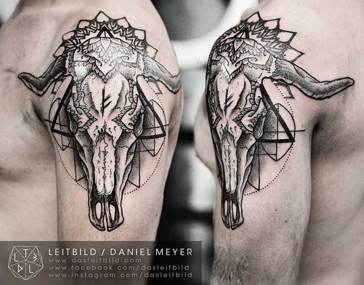 Cult style black and white animal skull with ornaments tattoo on shoulder