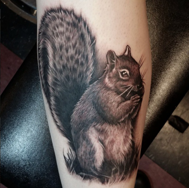 Cute 3D realistic squirrel lifelike photo detailed tattoo