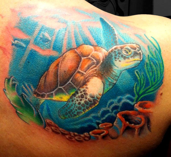 Cute Colored Big Underwater Turtle Tattoo On Shoulder