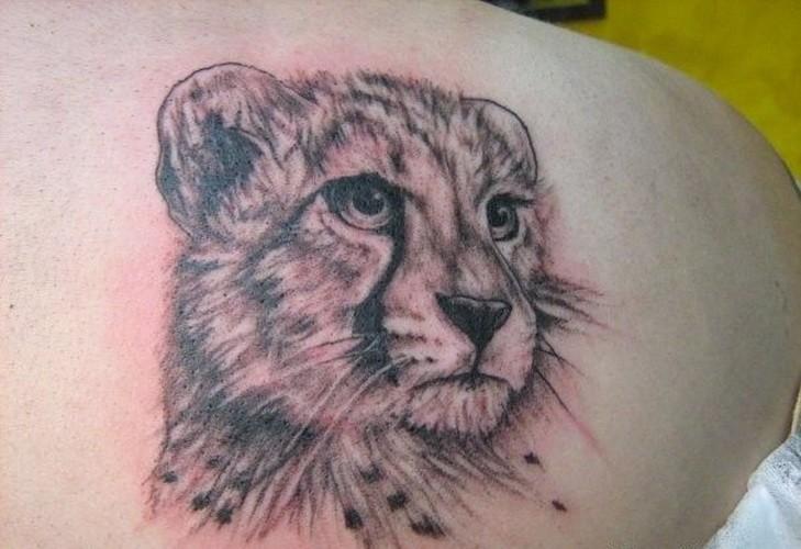 Tattoo mir süßem Gepardenkopf  in Grau auf dem Schulterblatt