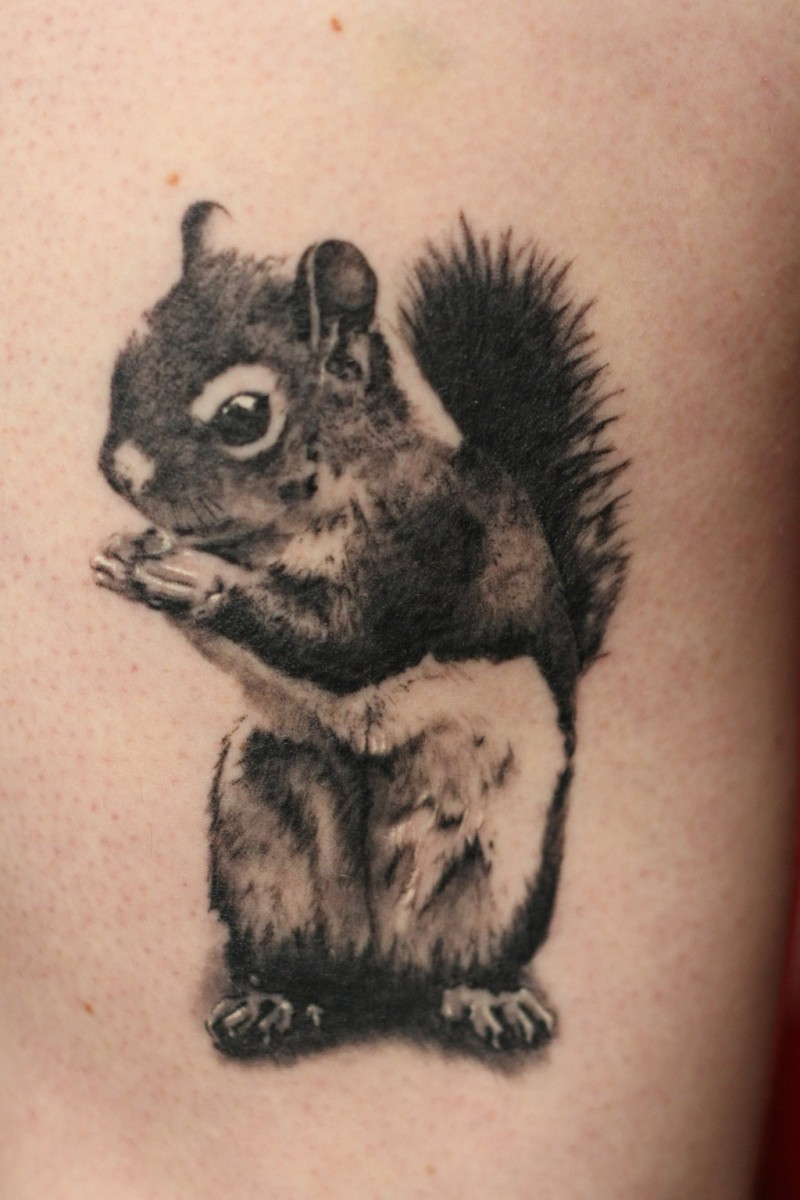 Cute little ink squirrel tattoo with shadows