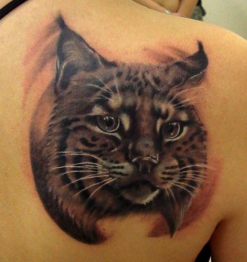 bellissimo dettagliato e colorato gatto selvatico tatuaggio su spalla