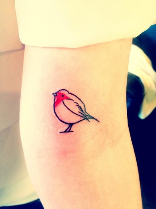 carono piccolo uccello rosso tatuaggio su braccio di donna
