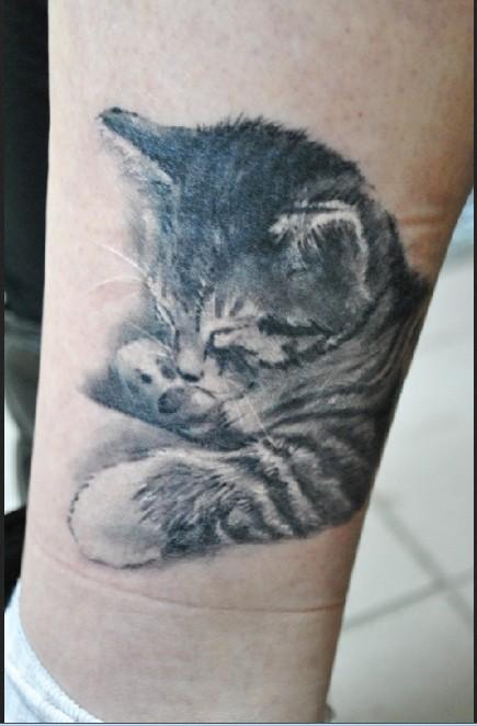 Cute sleeping little kitten tattoo on leg
