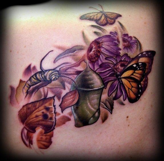 Tatuaggio colorato il ciclo del sviluppo della farfalla