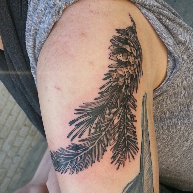 Dark ink pine tree branch with pine cone tattoo on shoulder