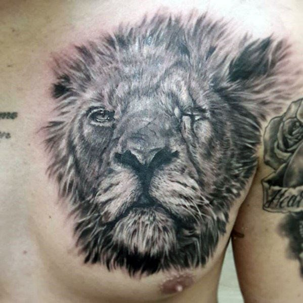 Detailed nice colored chest tattoo of old lion