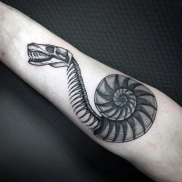 Dotwork style detailed forearm tattoo of snake skeleton in shell