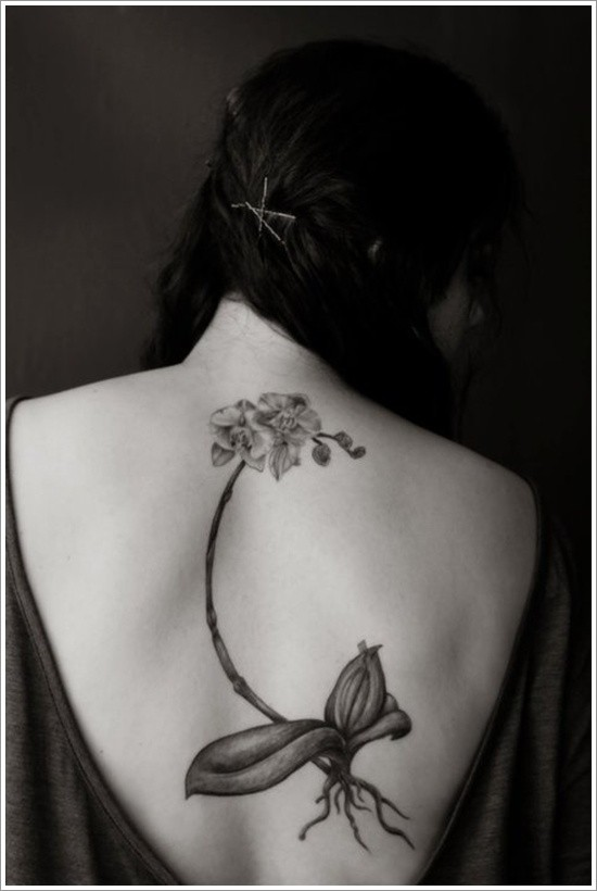 orchidea elegante con radice tatuaggio sulla schiena