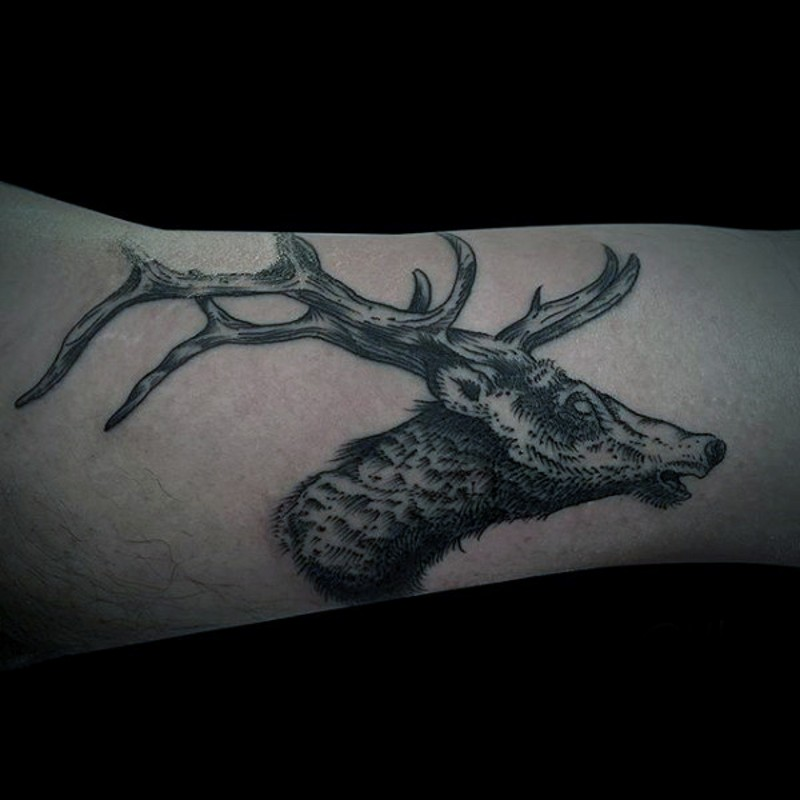 Engraving style black and white forearm tattoo of deer head