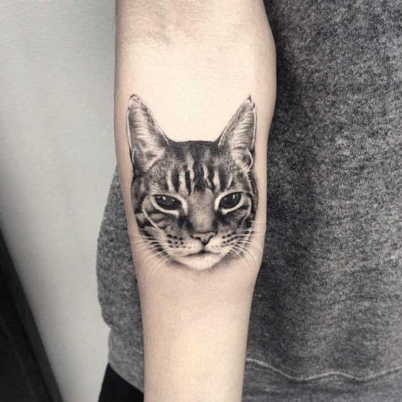 Engraving style black ink forearm tattoo of cat head