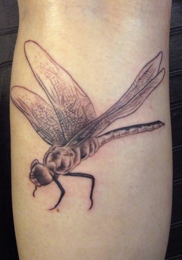 Flying detailed dragonfly tattoo