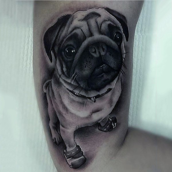 Great dog pictures part 7 for Funny dog tattoos