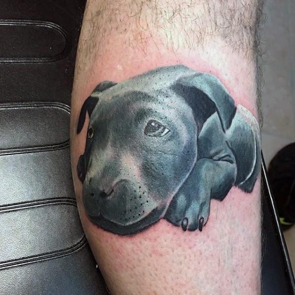 Funny little colored sad puppy tattoo on leg