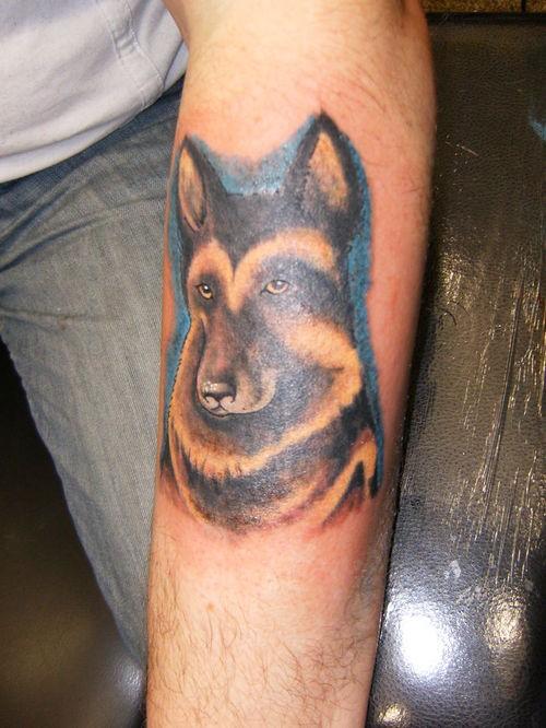 cane pastore tedesco tatuaggio su braccio