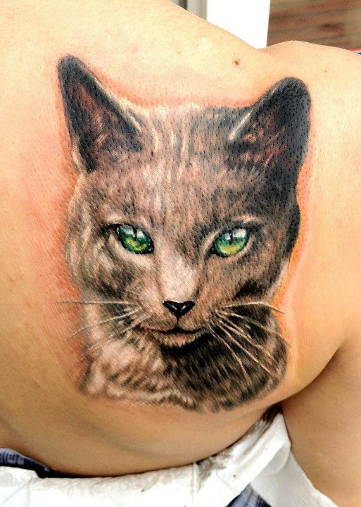 Gray cat snout with green eyes tattoo