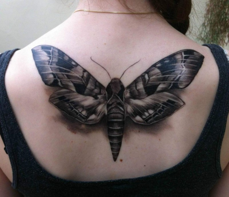 Gray ink moth tattoo on girl upperback in 3D style
