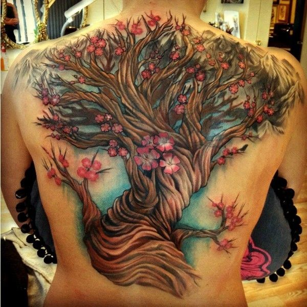 Great beautiful colored cherry blossom tattoo on back