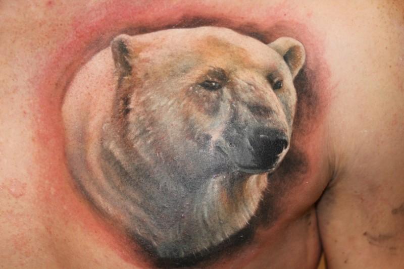 grande bello orso polare tatuaggio sulla scapola