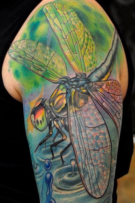 Great coloured realistic dragonfly tattoo on shoulder