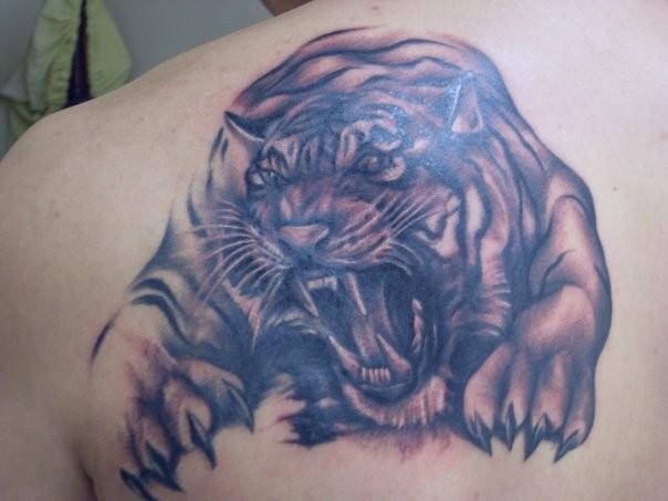 grande tigre minaccioso tatuaggio sulla schiena