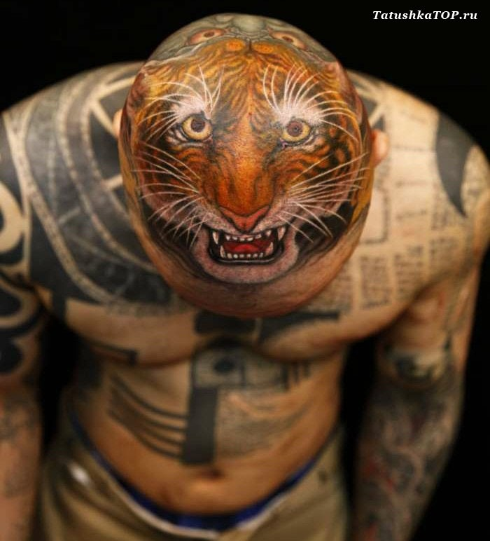 da79e2bd8 Great multicolored cartoon like angry tiger face tattoo on head ...