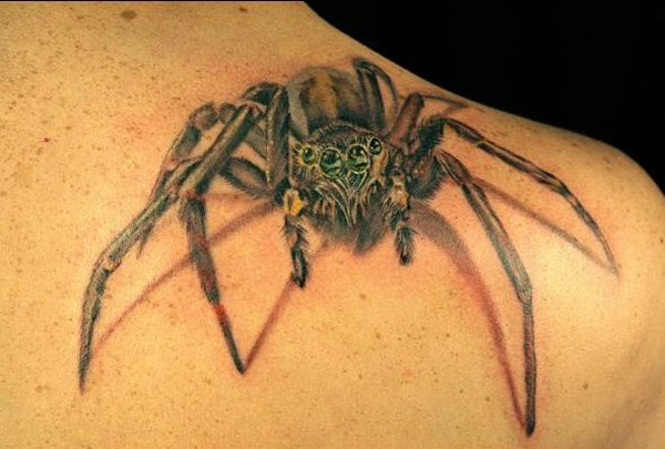 Great realistic spider tattoo on shoulder blade