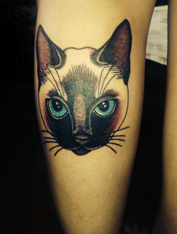 Siamese cat impressive coloured tattoo