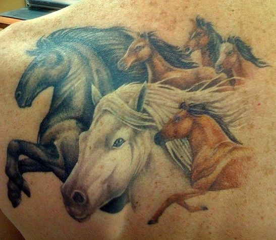 Herd of horses  tattoo on back