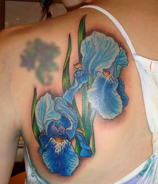 Illustrative style colored blue flowers tattoo on scapular