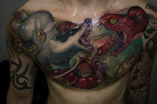 Illustrative style colored chest tattoo of snake and mongoose fight