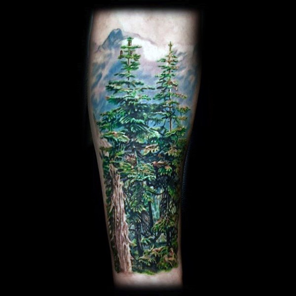 Illustrative style colored forearm tattoo of deep mountain forest